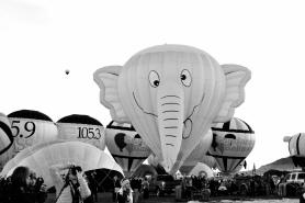 Albuquerque International Balloon Fiesta, EXHIB-IT! Sponsored Check Ride Balloon, EXHIB-IT!, DJ Heckes, Balloon Fiesta, Hot Air Balloon, Steve Chavez, Elephant Balloon